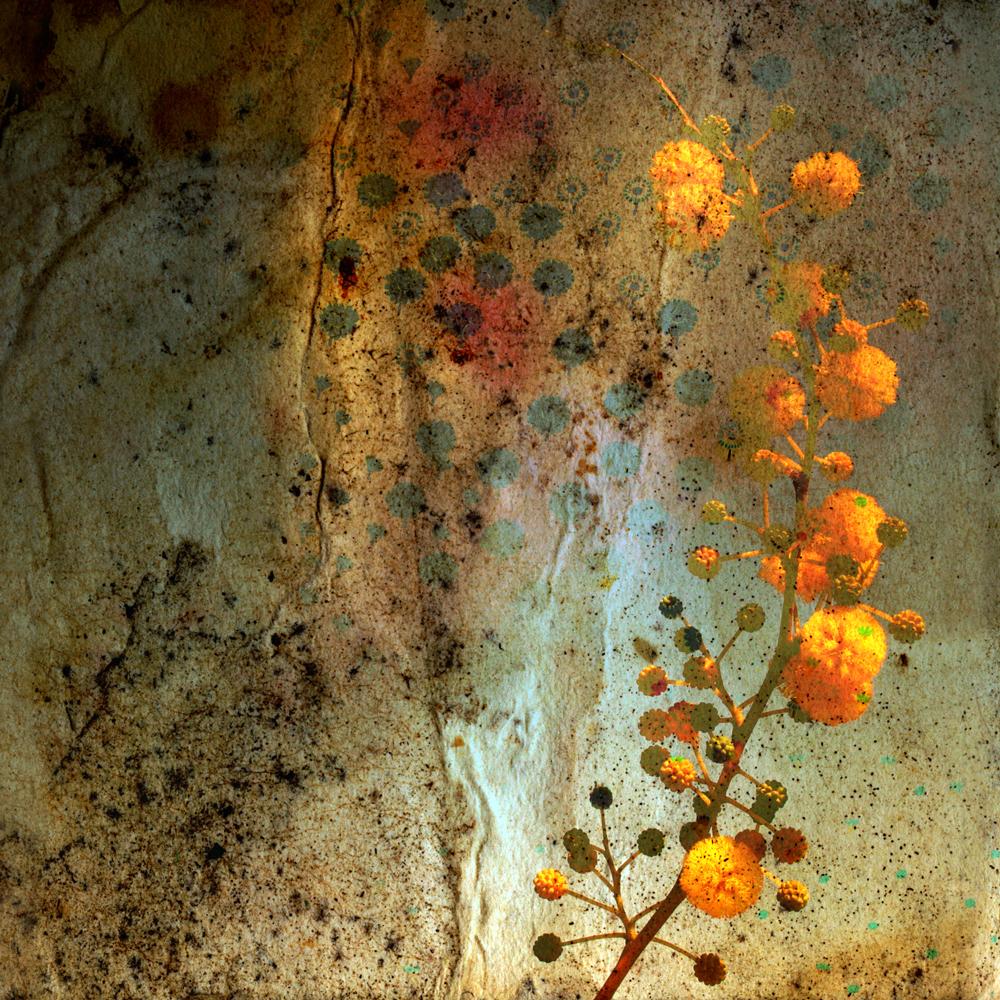 Spark 21 | Amanda C. Brainerd